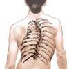 Основные терапевтические методики по исправлению искривления позвоночника